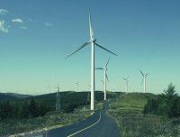 99 proc. projektów elektrowni wiatrakowych zostało wstrzymanych