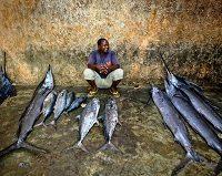 Światowe zasoby ryb są zagrożone