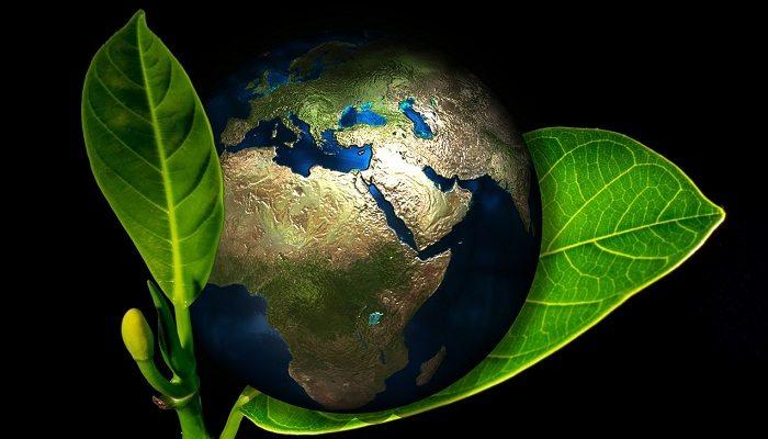 Polityka klimatyczna jednym z priorytetów resortu środowiska w 2017 r.