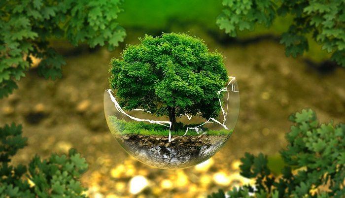 750 mln zł na projekty ekologiczne