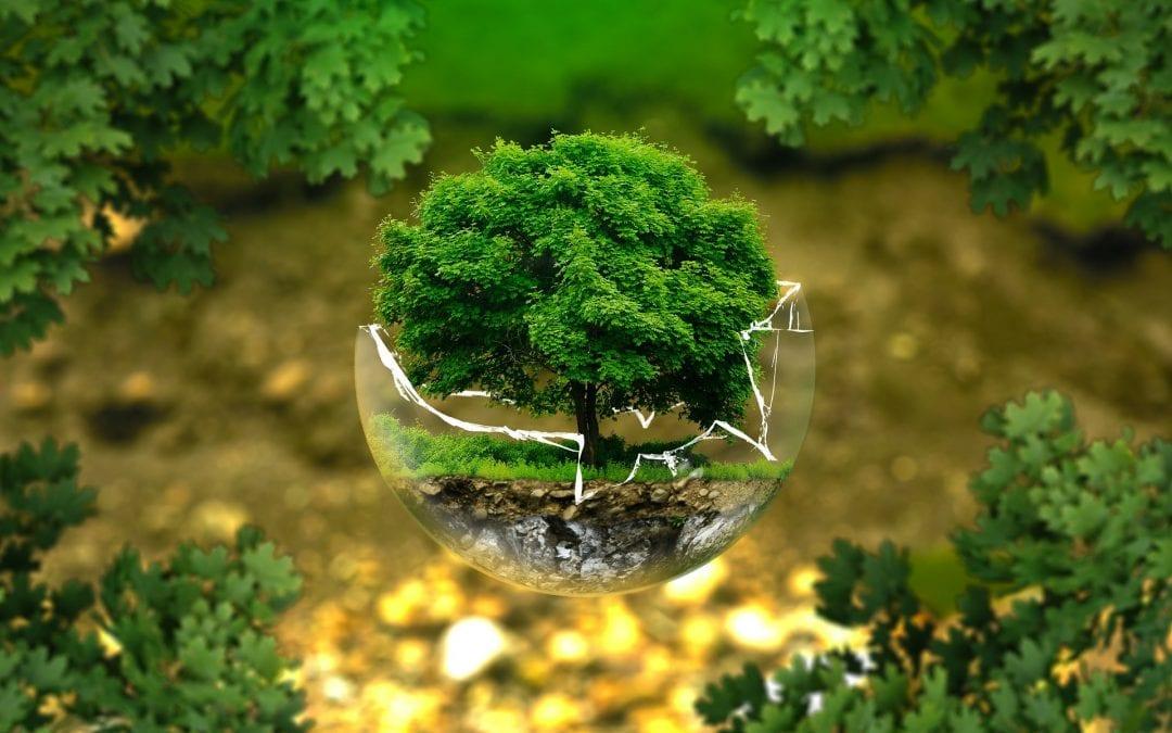 Nie będzie centralizacji w zarządzaniu środowiskiem