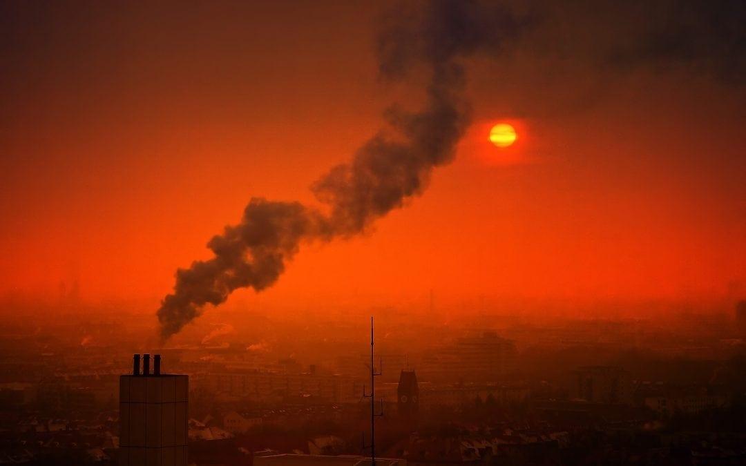 Smog obniża inteligencję
