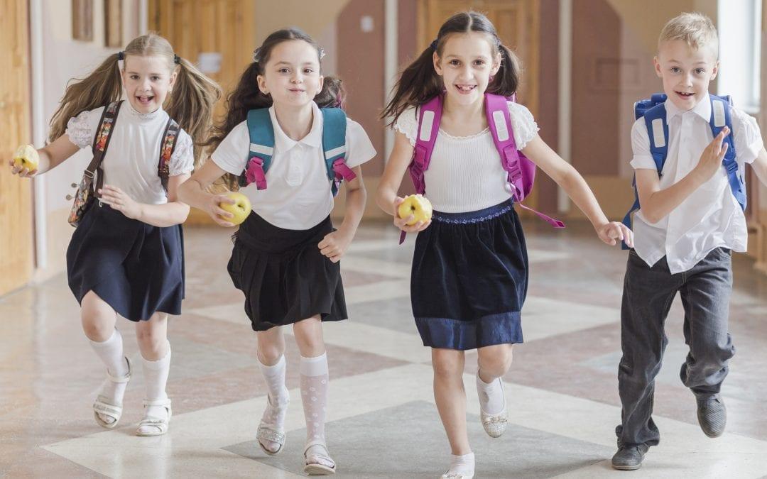 Działania poprawiające bezpieczeństwo w szkołach