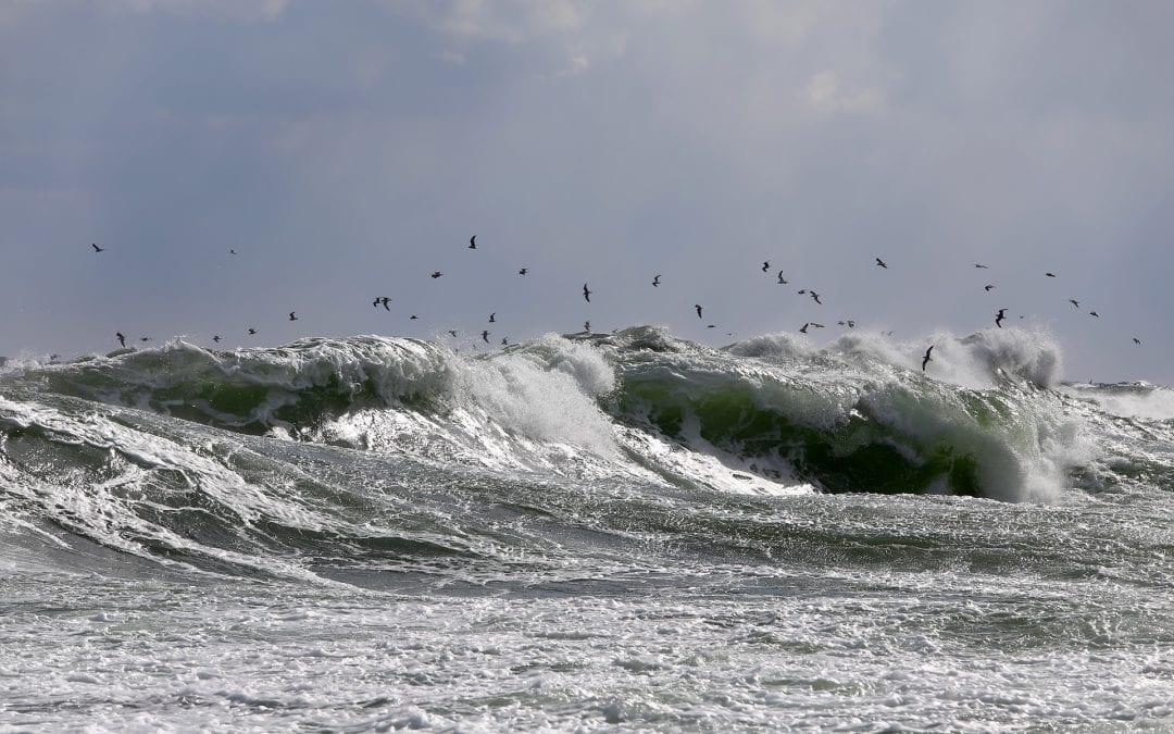 Zagrożenia występujące w Morzu Bałtyckim
