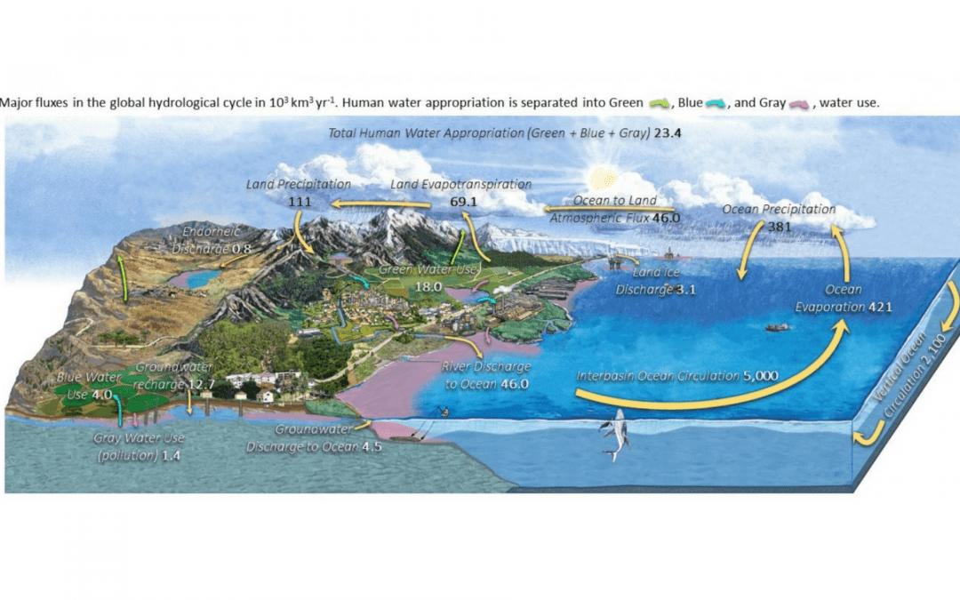 Hydrolodzy apelują o uaktualnienie schematów obiegu wody w przyrodzie