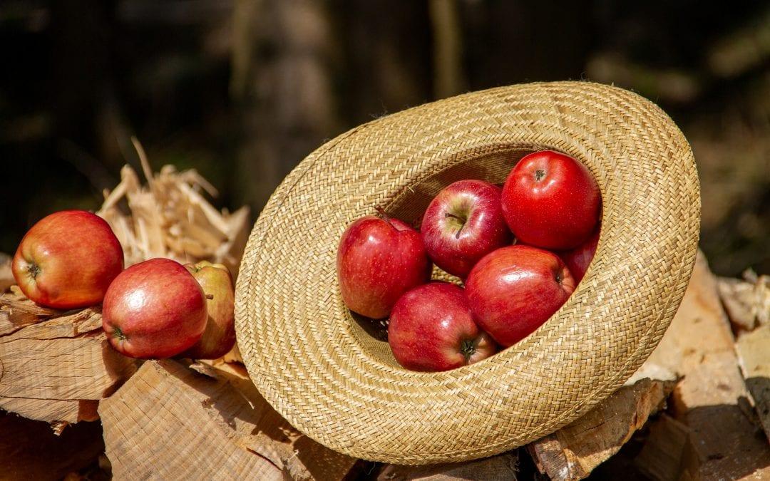 Produkty wolne od GMO będą oznakowane