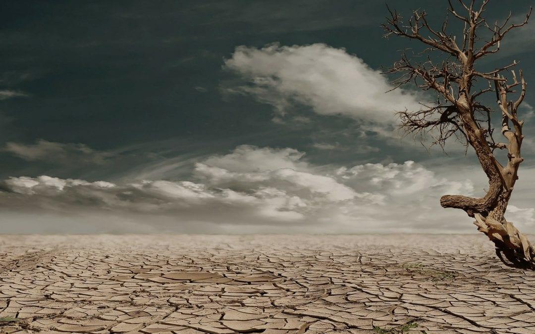 Raport specjalny IPCC: Ziemia jest pod presją człowieka