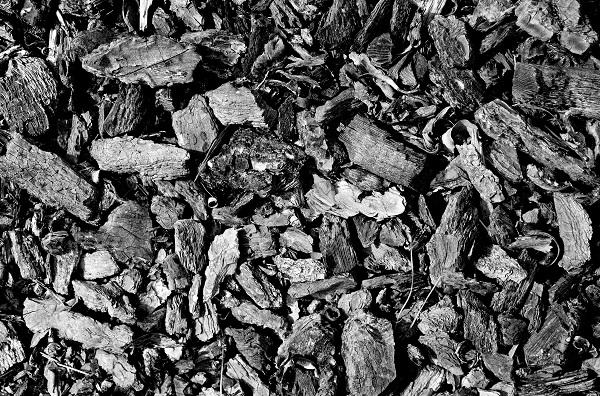 Od 1 lipca obowiązują nowe normy jakości węgla
