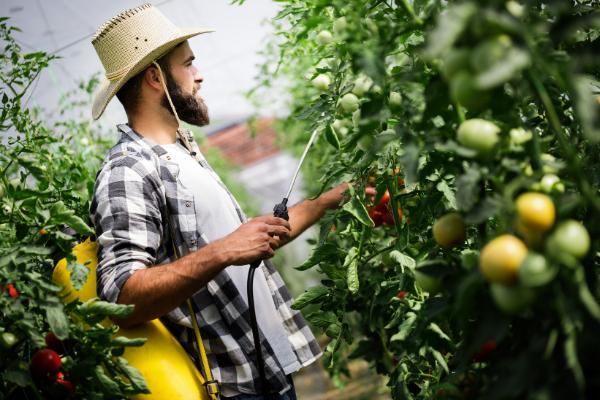 Szkolenie w zakresie środków ochrony roślin