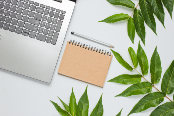 Zrównoważone biuro wzmacnia pozytywny wizerunek firmy